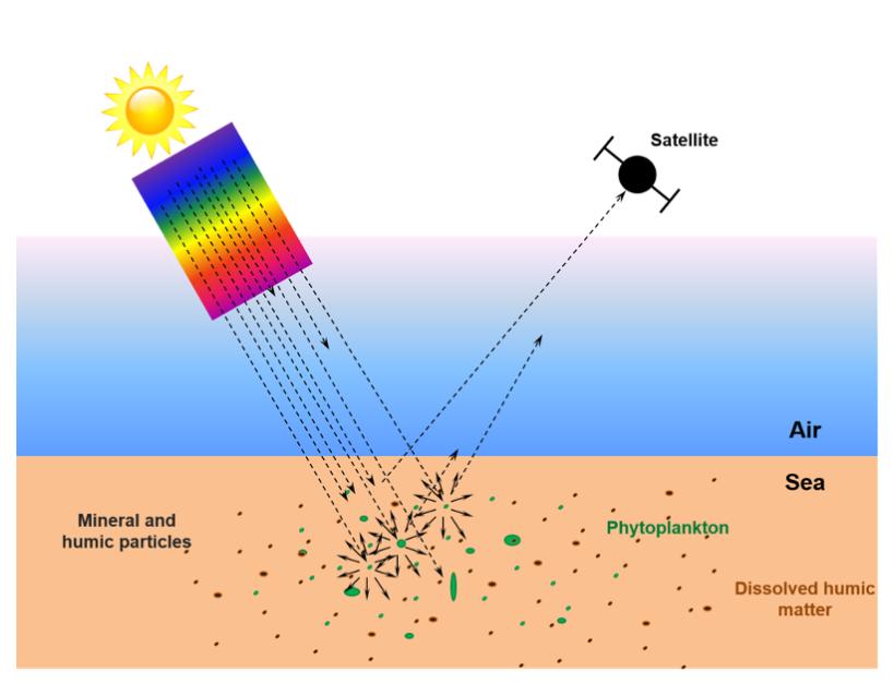 satellite analysis ocean color