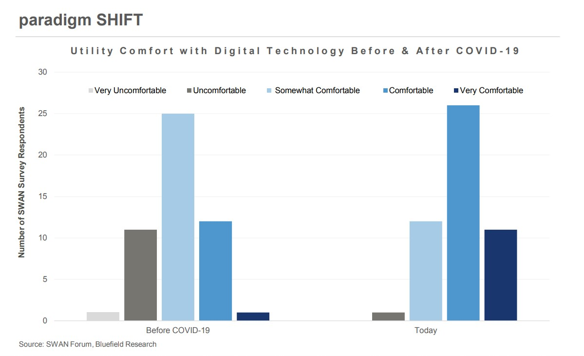 Utility Comfort with Digital Technology