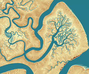 A high-resolution DEM of Rock Island, located along the Georgia coast next to the Deboy sound, created in ArcGIS from airborne lidar and collected as part of the 2010 Coastal Georgia Elevation Project. Source lidar made available by the NOAA Coastal Services Center.