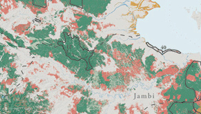 Sumatra Forest Cover Change