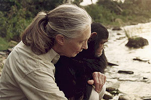ArcNews Spring 2005 Issue -- Dr. Jane Goodall to Present Keynote ...