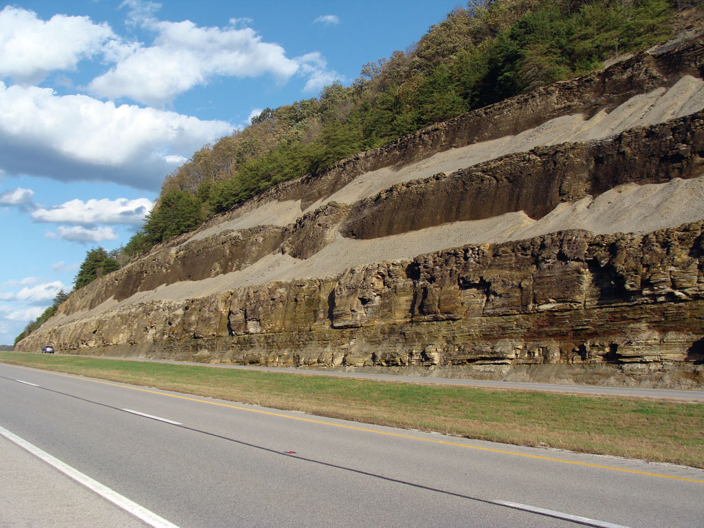 The Devonian Ohio Shale exposed along Interstate