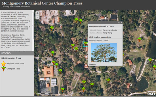 arcgis online web map templates use arcgis online to manage your own