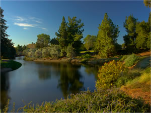 photo of the UC Davis Arboretum