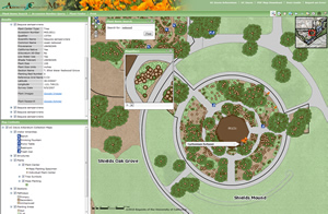 web map of the redwood tree collection