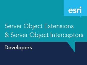 Server Object Extensions & Server Object Interceptors
