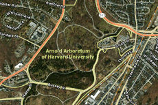 Online Map Application Unlocks Arboretum Collections