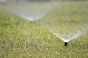 Knowing every sprinkler's performance is key to curbing overwatering.