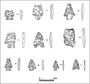 Projectile points recovered during the study of site 5MN8324. (Drawn by Jenn Mueller.)