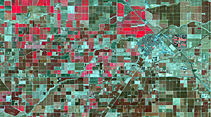 Landsat 8 color infrared (bands 5,4,3) of Chowchilla, California, highlighting vegetation in red.