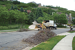 Tree branches being chipped for mulch during Sandy City's spring bulk waste cleanup.