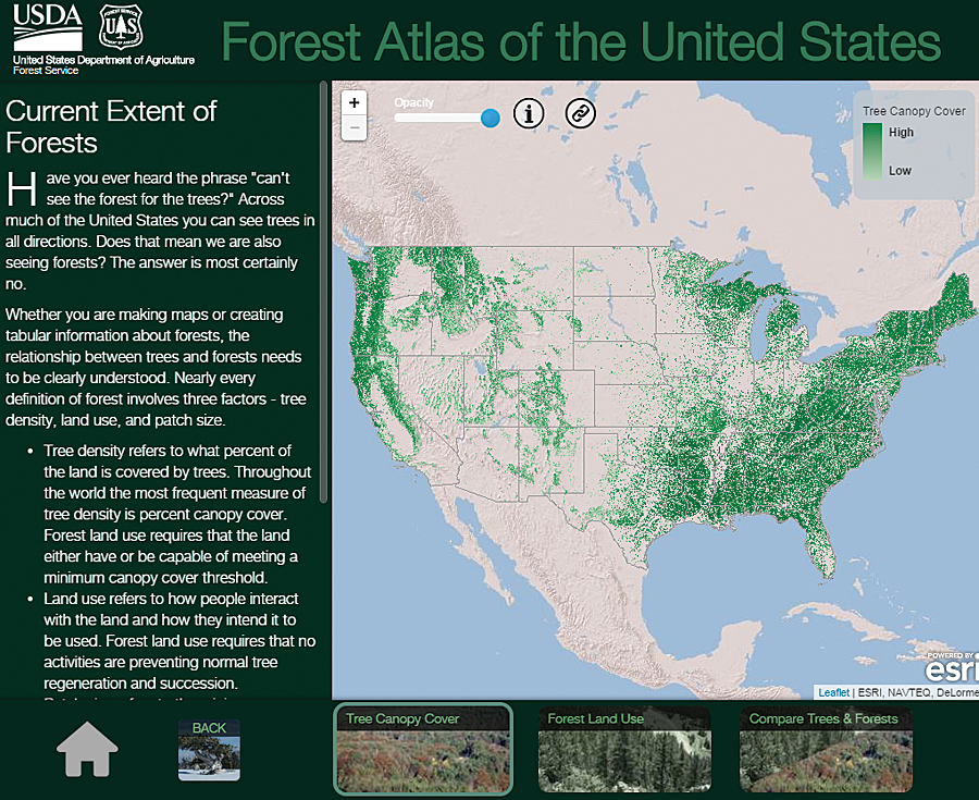 Forest Atlas Informs How Woodland Changes Affect Earth ArcNews - Map of us green forests