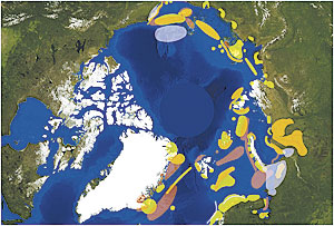 <em>The Arctic Risk Map</em> provides an ecological and biological vulnerability picture of areas where shipping could damage breeding seabirds (orange, green) and summer feeding areas for marine mammals (burgundy).