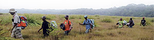 Simeon Dino, the program coordinator for Tshopo Province, leads a research team across a savanna in Lomami National Park.
