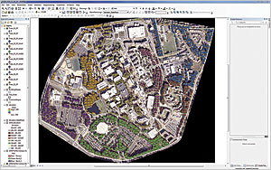 Tree point dataset created in ArcMap
