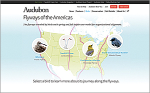 When Audubon committed to large-scale conservation projects in 2010, it adopted a new organizational structure based on four flyways traveled by migrating birds. (Screen shot courtesy of the National Audubon Society)