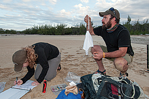 Audubon volunteers collect data for a project in the Bahamas. (Photo by Walker Golder/courtesy of the National Audubon Society)