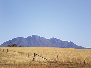 Grain production plays a dominant role in Australia's agriculture.