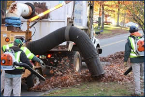 Public Works Department employees collect leaves in a South Windsor residential neighborhood.