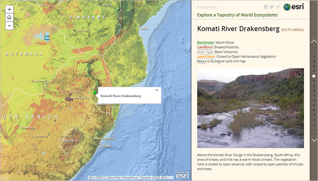 The Komati River Gorge is an ecological stronghold for some of the world's most threatened grassland species.