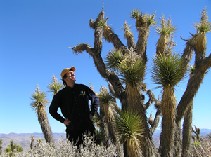 _Green Guru Joseph Kerski, who blogs for Green 360, stands in the desert among several Joshua trees.