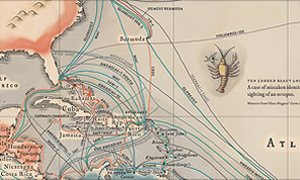 Submarine Cables | Maps We Love